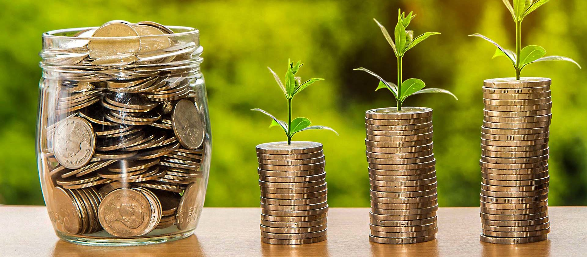 Money Grow -Image for specific Seminars